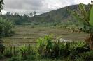 2005 Madagascar