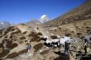 Vall del Khumbu