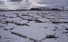 Illes Lofoten_24